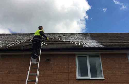 Roof Treatments Original 2 t